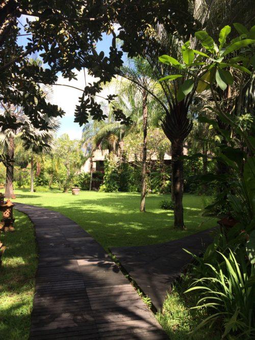 pathway at Yayasan Bali Purnati