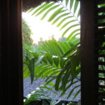 view of greenery outside desk window