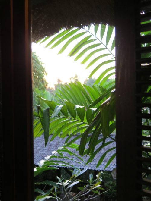 view of greenery outside desk window