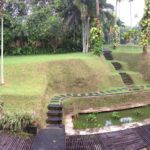lush grass garden view of Bali Purnati